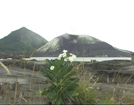 Tavurvur Volcano - Rabaul 2002
